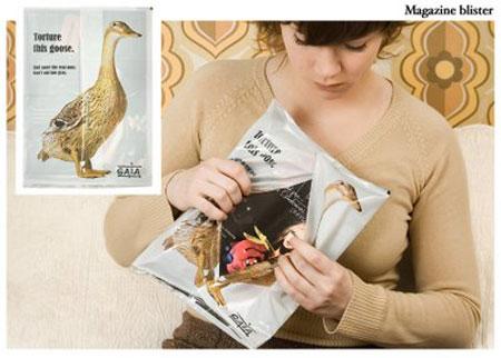 magazine_blister_1_.jpg